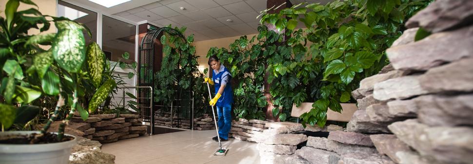 чистка на дому кожаной мебели Люберцы недорого